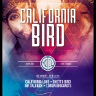 california_bird_flyer