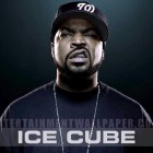 ice-cube-PIC-WSW1058721